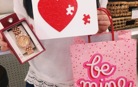 Valentine's Day Ideas for Couples and Singles