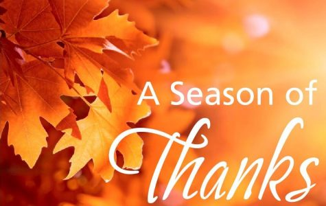 Reasons of being thankful…or thankless