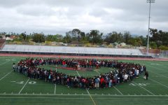 Hoover joins schools across the nation
