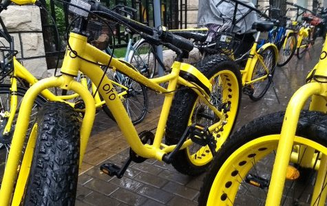 Ofo Bikes Over Walking