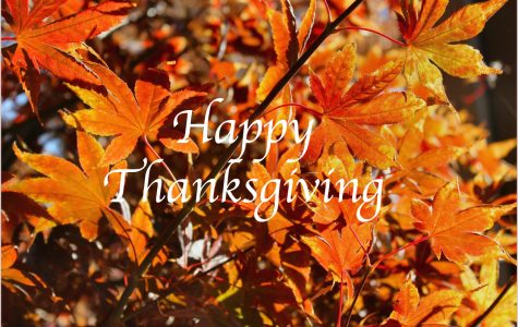 Giving thanks for what we have